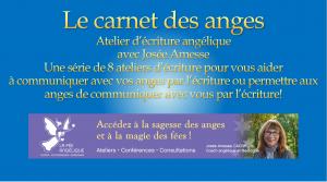 le-carnet-des-anges-learndash-300x167_300